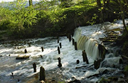 River spring photo