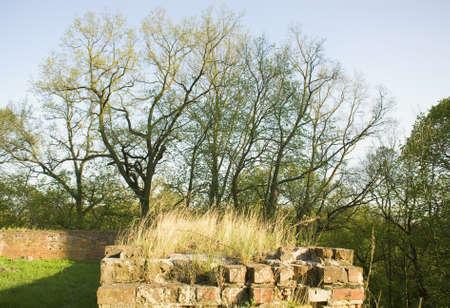 teutonic: Teutonic wall