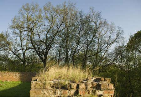 teutonic: Muro teutonico Archivio Fotografico