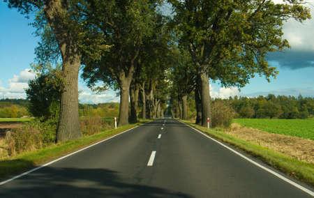 road autumnal: Road, Highway