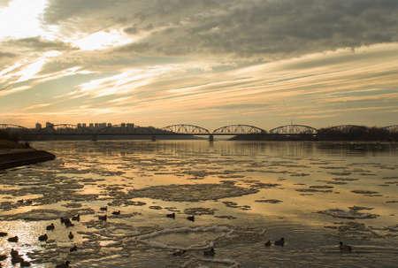 Mallard, river and bridge Stock Photo - 17089024