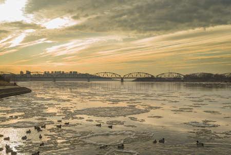 Mallard, river and bridge Stock Photo - 17295022