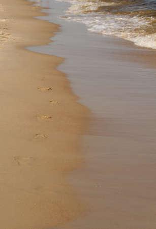 Baltic sea Tracks Stock Photo - 20855292