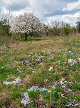 landfills: Landfill and tree Stock Photo