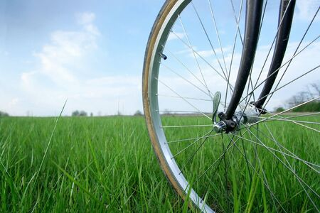 Bicycle wheel on a green field