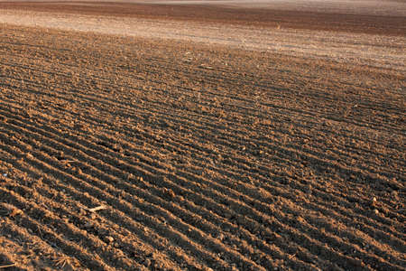 plowed field: Brown, fertile, plowed soil of an agricultural field