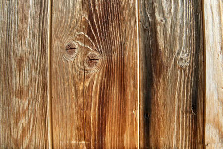 carpentery: Bright wood texture background Stock Photo