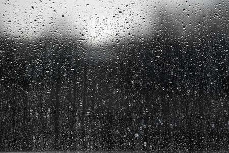 Pluie sur une surface de fen�tre