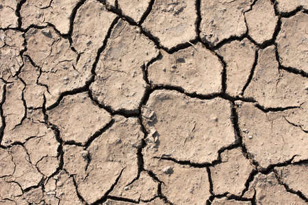 Dried out soil texture of a barren land photo