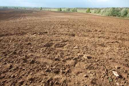 dirt: Brown soil of an agricultural field Stock Photo