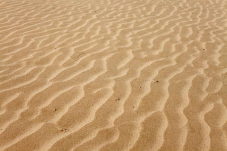sands: Soft sand texture with lines made by the wind Stock Photo