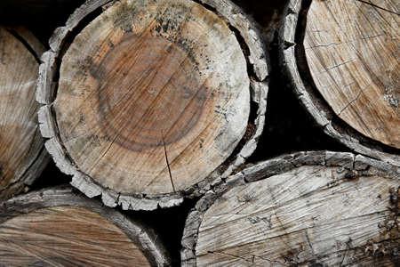 Closeup of a pile of logs photo