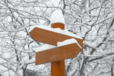 Blank direction signs in falling snow Stock Photo - 8014150