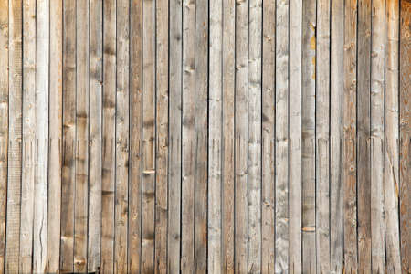 Lumber texture, bright wooden background photo