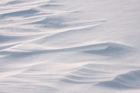 Field with fresh snow 写真素材