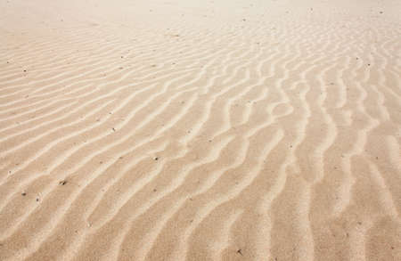 Lines in the sand of a beach photo