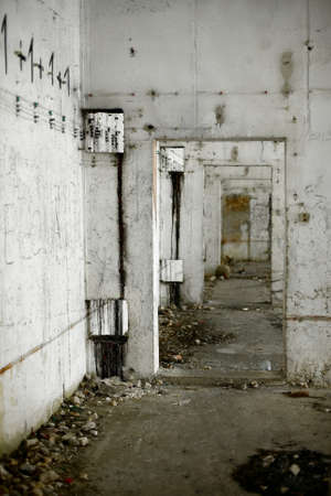 Inside of an abandoned, ruined building photo