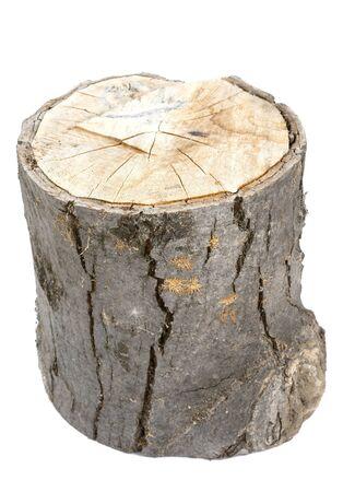 Wood log isolated on white background