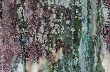 Rough rusty texture of a piece of metal Stock Photo - 13191461