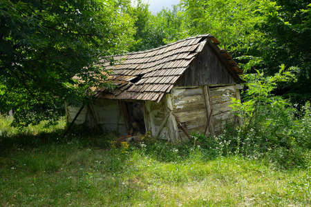 abandoned: Collapsed, old hut in the forest
