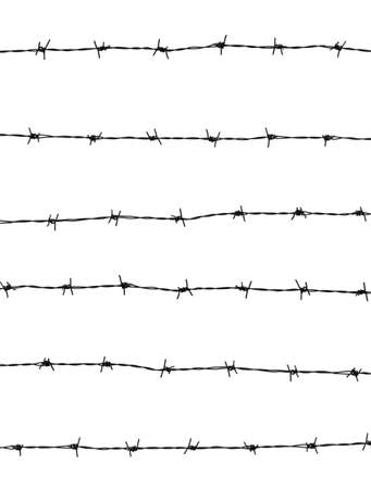 invade: Barbed wires isolated on white background