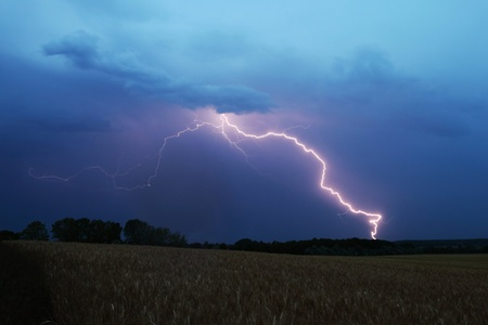 Lightning strikes down over a field photo