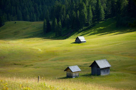 Alpine field with green grass and huts Stock Photo - 15904038
