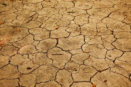 Dry soil texture closeup photo
