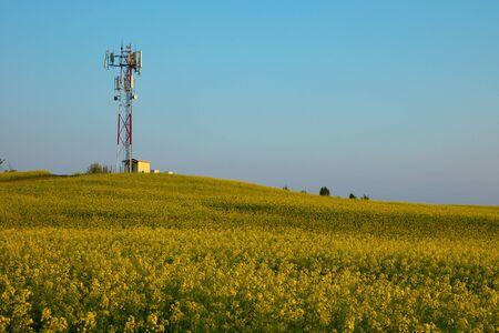 Transmisor de torre por encima de un campo de colza en flor Foto de archivo - 24190223