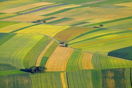 Vue aérienne des champs agricoles Banque d'images - 31603906