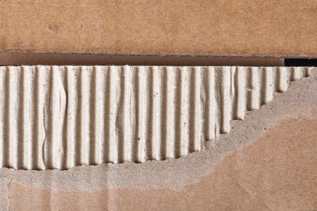 Torn piece of cardboard 写真素材