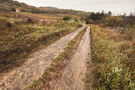 Dirtroad in the countryside 写真素材 - 128904451