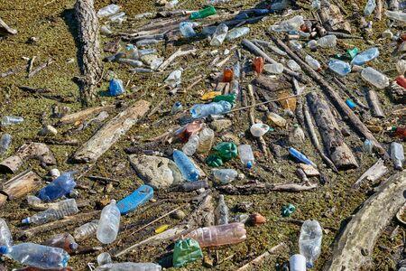 Plastic bottles in water