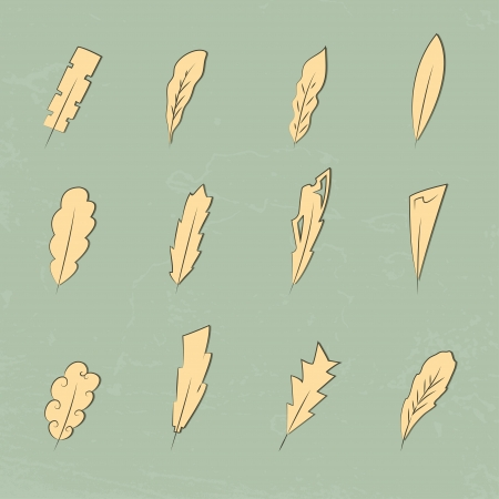 vintage feathers Stock Vector - 15445138