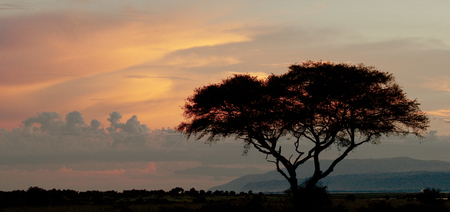 Sunset in Murchisons Falls National Park. Africa. Uganda. An excellent illustration. Stock Photo