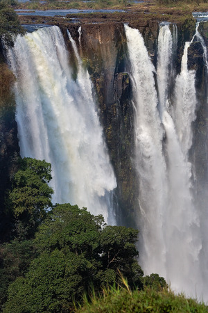 zimbabwe: View of Victoria Falls from the ground. Mosi-oa-Tunya National park.