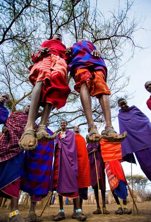KENYA, MASAI MARA - JULY 19, 2011: The man of a tribe Masai shows ritual jumps.