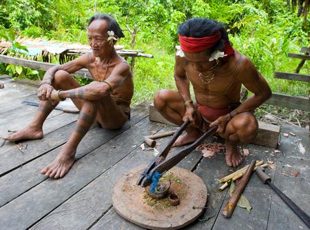 MENTAWAI PEOPLE, WEST SUMATRA, SIBERUT ISLAND, INDONESIA - 16 NOVEMBER 2010: Man Mentawai tribe prepares poison for the arrows for hunting.