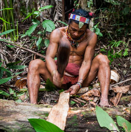 MENTAWAI PEOPLE, WEST SUMATRA, SIBERUT ISLAND, INDONESIA - 16 NOVEMBER 2010: Man Mentawai tribe in the jungle makes his clothes from the tree bark. Editorial