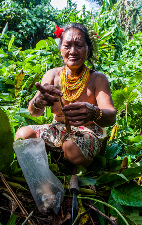 MENTAWAI PEOPLE, WEST SUMATRA, SIBERUT ISLAND, INDONESIA - 03 OKTOBER 2011: Woman Mentawai tribe collects plants in the jungle.