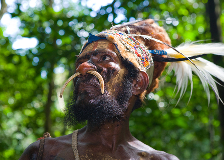 NEW GUINEA, INDONESIA - 13 JANUARY: Portrait of a tribal chief Yaffi in war paint. New Guinea Island, Indonesia. January 13th, 2009. Editorial