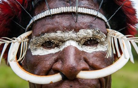 DANI VILLAGE, WAMENA, IRIAN JAYA, NEW GUINEA, INDONESIA - 15 MAY 2012: Dani tribe warriors face in a ritual coloring on his face. Editorial
