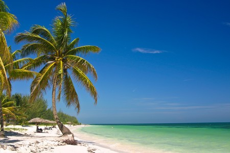 Beach with palmtrees at Cayo Levisa island, near Pinar del Rio, Cuba Stok Fotoğraf