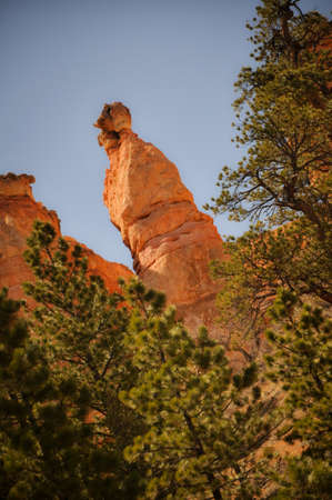 Hoodoo above the Trees in Bryce Canyon Stock Photo