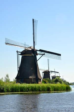 molino de agua: Mills and Water Lilies in Kinderdijk