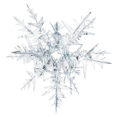 flakes: Snow flake on a white background