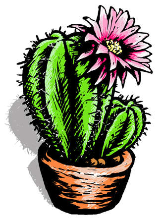 undemanding: Funny cactus Illustration of a cactus and a marguerite in a brown pot Stock Photo