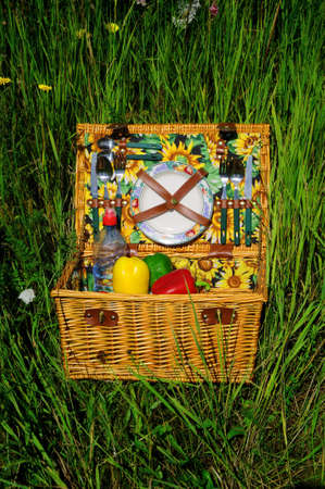 Picnic basket A filled picnic basket standing in green grass photo