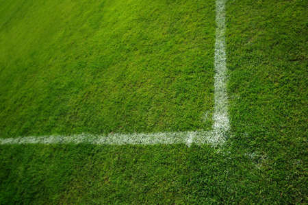 touchline: Touchline and chalk Part of a football pitch with line and chalk Stock Photo