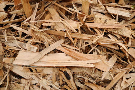 wood chip: Woodchips Close-up of a woodchip stack